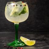 Gin Tônica