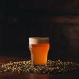 8-Hórus Pale Ale (Pale Ale)- 1L